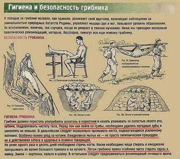http://s7.uploads.ru/t/kRCvh.jpg