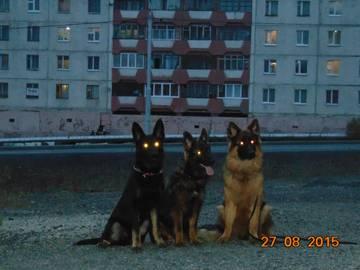 http://s7.uploads.ru/t/kdRcv.jpg