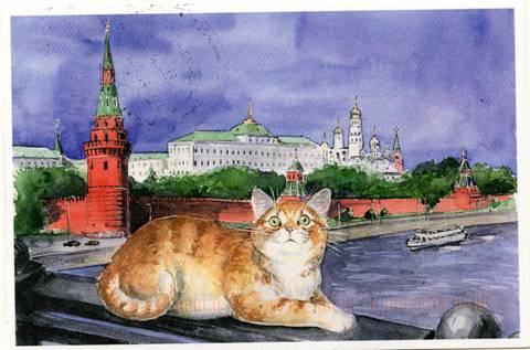 http://s7.uploads.ru/t/ksto5.jpg