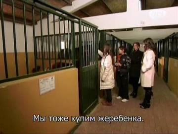 http://s7.uploads.ru/t/l7Eyg.jpg