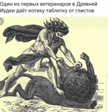 http://s7.uploads.ru/t/lsB7z.jpg