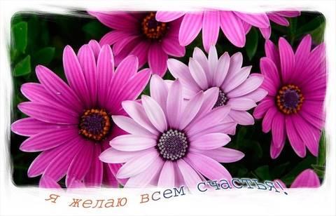 http://s7.uploads.ru/t/mbRVJ.jpg