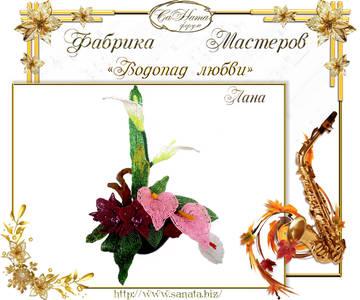 http://s7.uploads.ru/t/ml59x.jpg