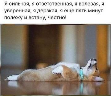 http://s7.uploads.ru/t/nUGwI.jpg