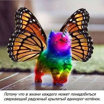 http://s7.uploads.ru/t/nf3AX.jpg