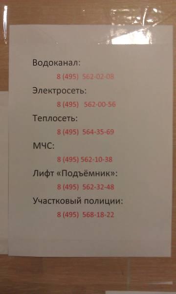 нужные номера телефонов