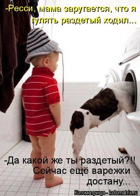 http://s7.uploads.ru/t/oMqAG.jpg