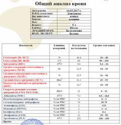 http://s7.uploads.ru/t/p01Tr.jpg