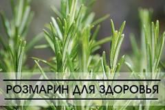 http://s7.uploads.ru/t/pHhMP.jpg