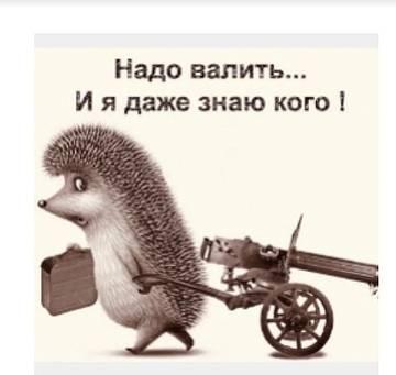 http://s7.uploads.ru/t/qO6s3.jpg