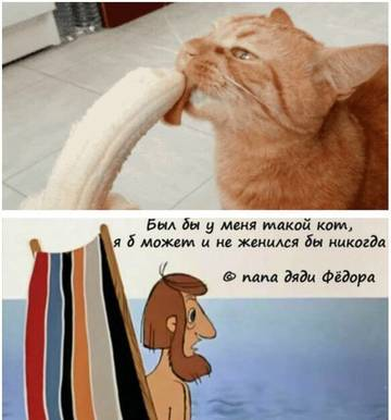 http://s7.uploads.ru/t/qm8p0.jpg