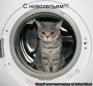 http://s7.uploads.ru/t/qn2y1.jpg