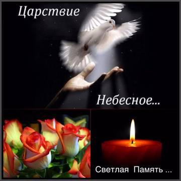 http://s7.uploads.ru/t/rEgXj.jpg