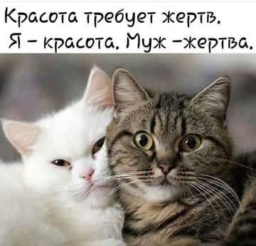 http://s7.uploads.ru/t/rG3f0.jpg