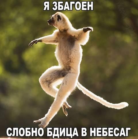 http://s7.uploads.ru/t/rNwJV.jpg