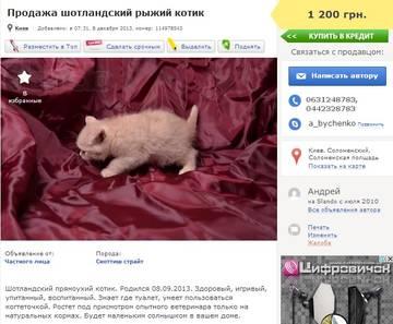 http://s7.uploads.ru/t/rgBpL.jpg