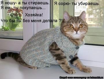http://s7.uploads.ru/t/rixh9.jpg