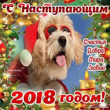 http://s7.uploads.ru/t/rkh8I.jpg