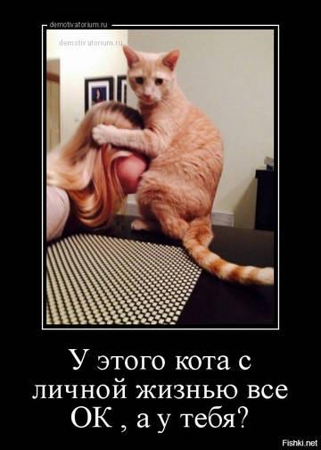 http://s7.uploads.ru/t/rq0G7.jpg