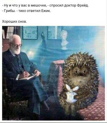 http://s7.uploads.ru/t/s15EK.jpg