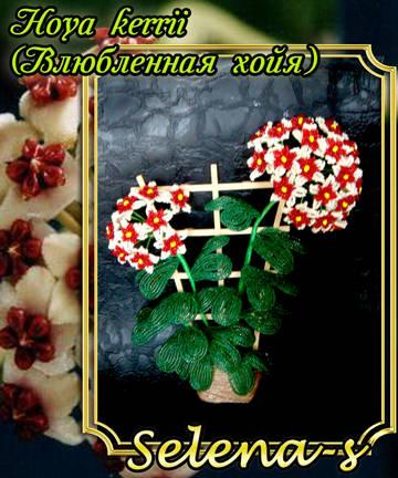 http://s7.uploads.ru/t/sYuLj.jpg
