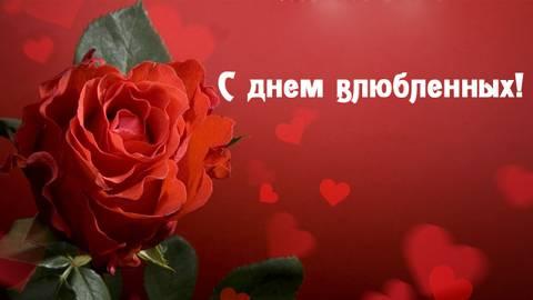 http://s7.uploads.ru/t/sZMby.jpg