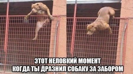 http://s7.uploads.ru/t/sp3vq.jpg