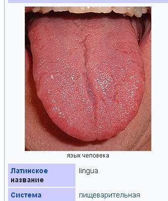 http://s7.uploads.ru/t/t1GN2.jpg