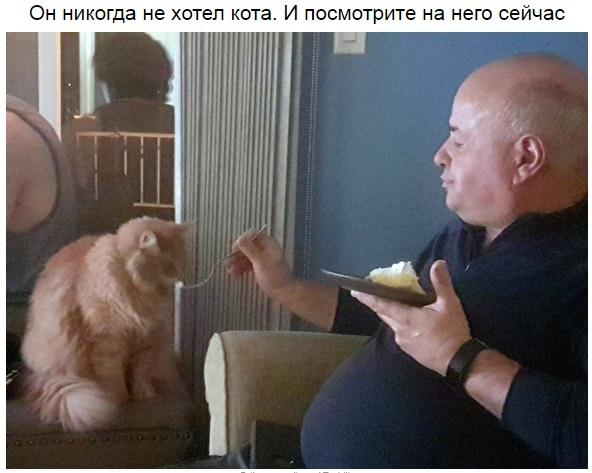http://s7.uploads.ru/t/tK6l9.jpg