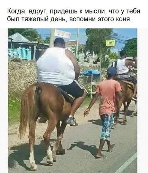 http://s7.uploads.ru/t/tRd9l.jpg