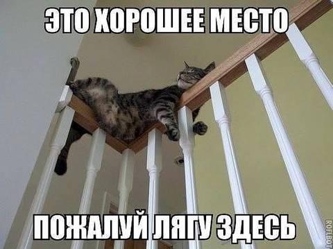 http://s7.uploads.ru/t/tgLDC.jpg
