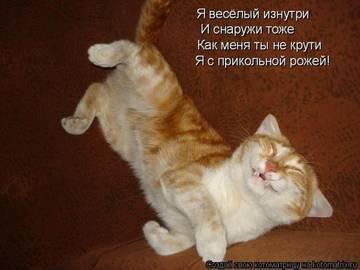 http://s7.uploads.ru/t/uOBrg.jpg