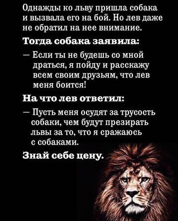 http://s7.uploads.ru/t/ubTNd.jpg