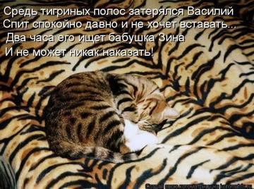 http://s7.uploads.ru/t/unFVl.jpg