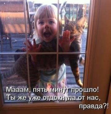http://s7.uploads.ru/t/uwYIO.jpg