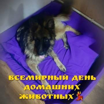 http://s7.uploads.ru/t/v9MLi.jpg