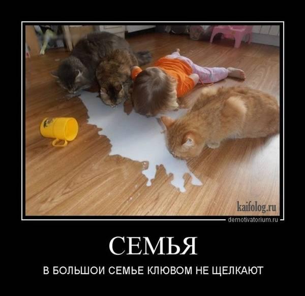 http://s7.uploads.ru/t/vT1DC.jpg
