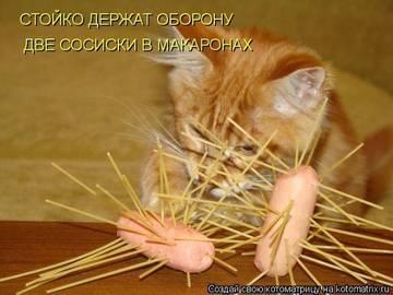 http://s7.uploads.ru/t/wWzf1.jpg
