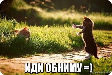 http://s7.uploads.ru/t/wZa2K.jpg
