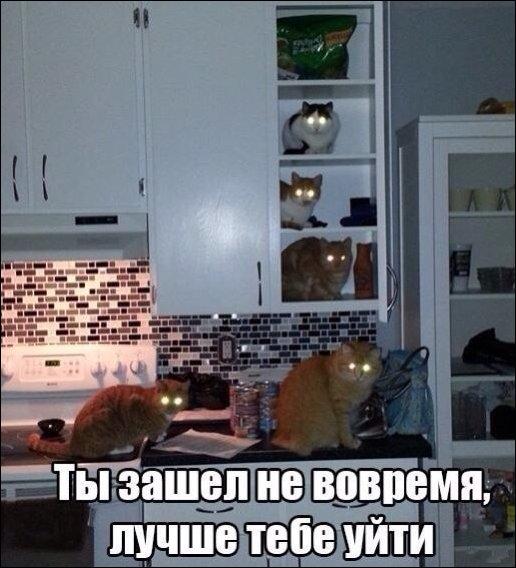 http://s7.uploads.ru/t/wbWIK.jpg
