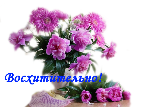http://s7.uploads.ru/t/xXFbu.png