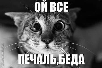 http://s7.uploads.ru/t/yi953.jpg