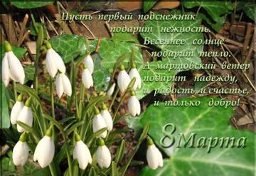 http://s7.uploads.ru/t/ynkQq.jpg