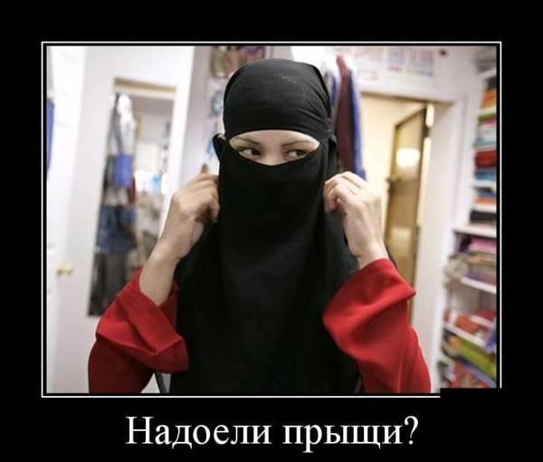 http://s7.uploads.ru/t/ywHiR.jpg
