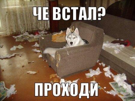 http://s7.uploads.ru/t/yzuE9.jpg