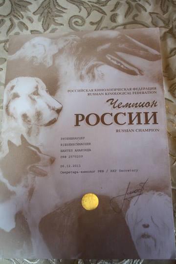 http://s7.uploads.ru/t/z1xFd.jpg