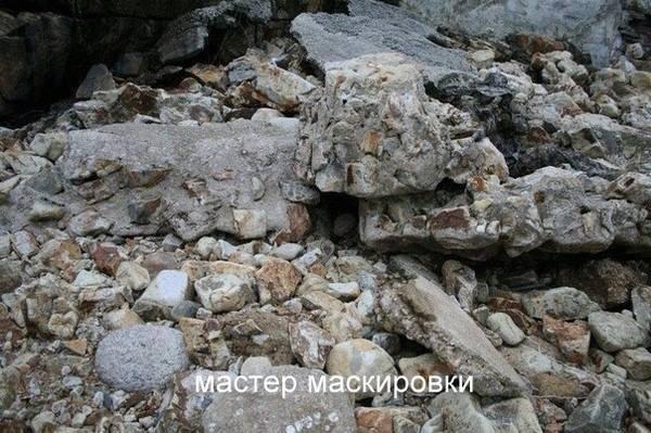 http://s7.uploads.ru/t/zCaHW.jpg