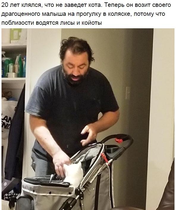 http://s7.uploads.ru/t/zPnJo.jpg