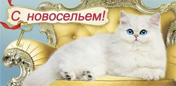 http://s7.uploads.ru/t/ztgbv.jpg