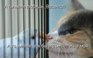 http://s7.uploads.ru/t/zu0Fg.jpg